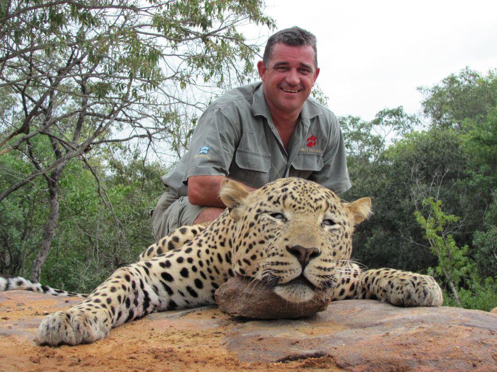 Leopards & Lions Banner
